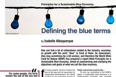 Defining the blue terms, HR E-Zine 1/2017